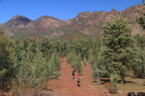 Approaching Wilpena Pound