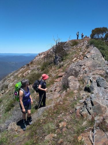 Mt Buller - ascending West Ridge (1)